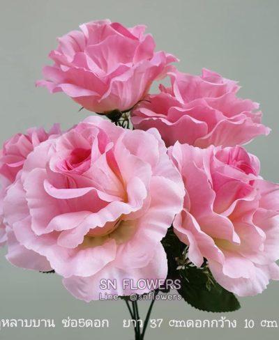 ดอกไม้สีชมพู_๑๙๐๕๐๒_0010