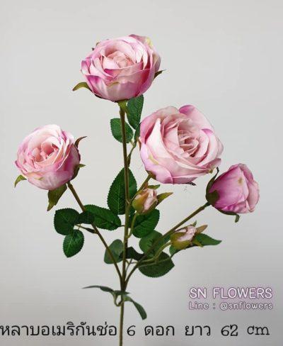 ดอกไม้สีชมพู_๑๙๐๕๐๒_0019