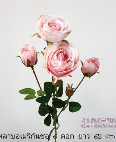 ดอกไม้สีชมพู_๑๙๐๕๐๒_0020
