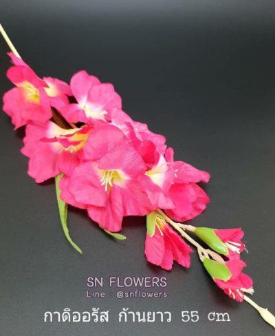 ดอกไม้สีชมพู_๑๙๐๕๐๓_0059