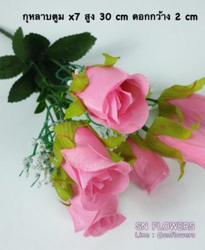 ดอกไม้สีชมพู_๑๙๐๕๐๓_0160