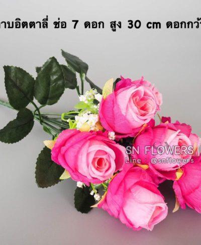 ดอกไม้สีชมพู_๑๙๐๕๐๓_0178