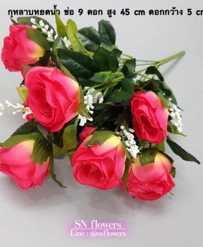 ดอกไม้สีชมพู_๑๙๐๕๐๓_0186