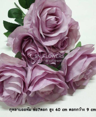 ดอกไม้สีม่วงมีข้อมูล_๑๙๐๕๑๙_0029