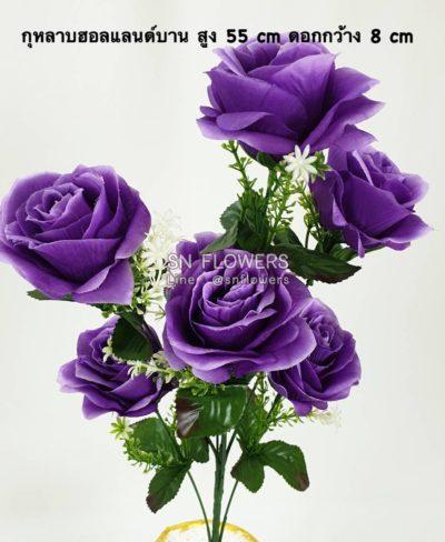 ดอกไม้สีม่วงมีข้อมูล_๑๙๐๕๑๙_0052