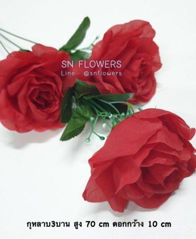 ดอกไม้แดง(ใส่ข้อมูลแล้ว)_๑๙๐๕๑๕_0071