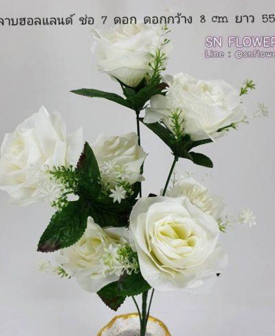 ดอกไม้สีขาว_๑๙๐๗๒๔_0053