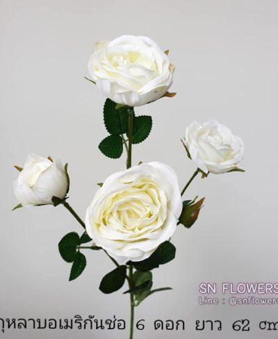 ดอกไม้สีขาว_๑๙๐๗๒๔_0054