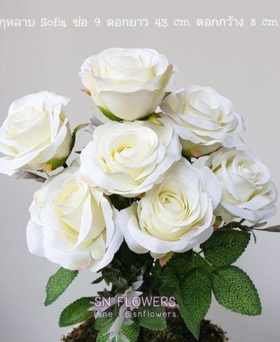 ดอกไม้สีขาว_๑๙๐๗๒๔_0057