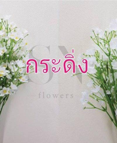 ดอกไม้สีขาว_๑๙๐๗๒๔_0095