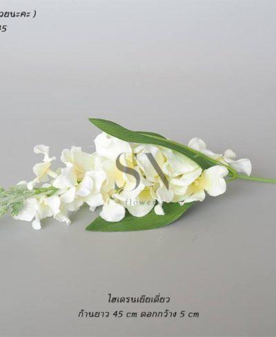 ดอกไม้สีขาว_๑๙๐๗๒๔_0102